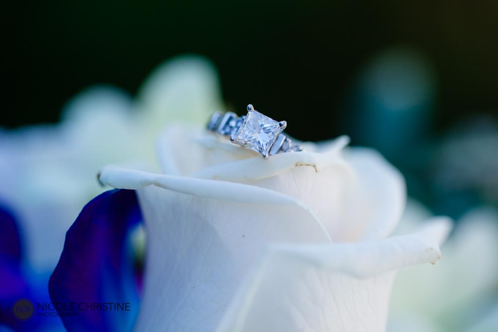 Liska GR best chicago wedding photographer-24