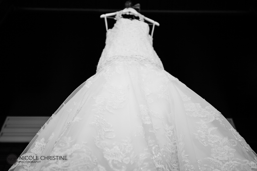 Liska GR best chicago wedding photographer-9