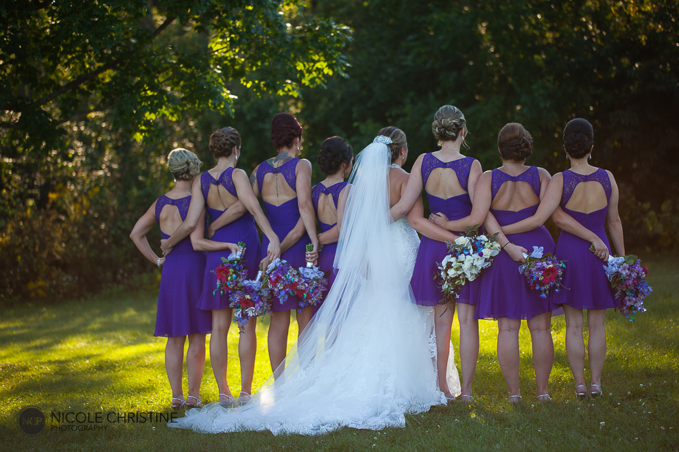 Liska posed chicago wedding photographer-30