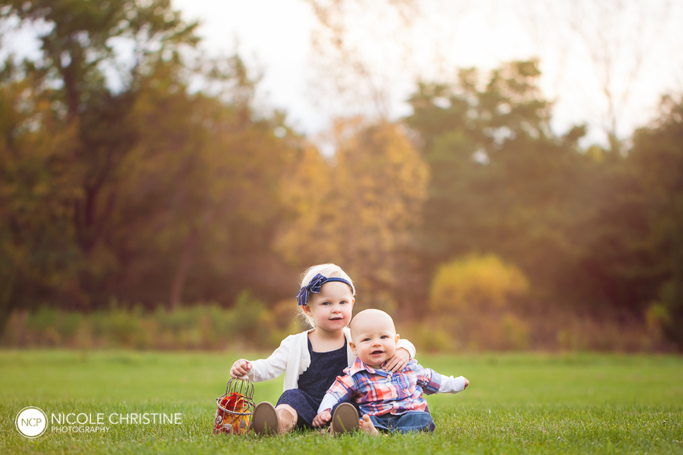 best Schaumburg Family Photographer-12