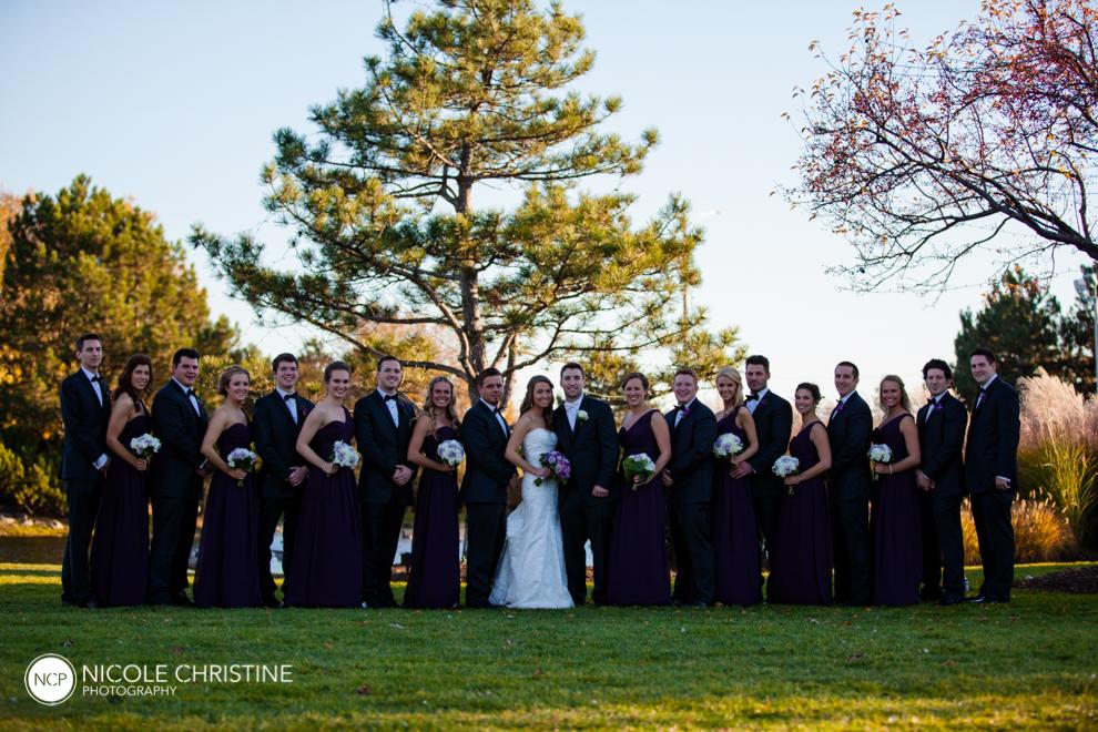 Best Schaumburg Wedding Photographer_-67