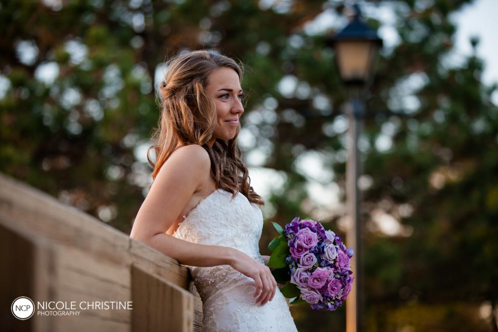 Best Schaumburg Wedding Photographer_-87