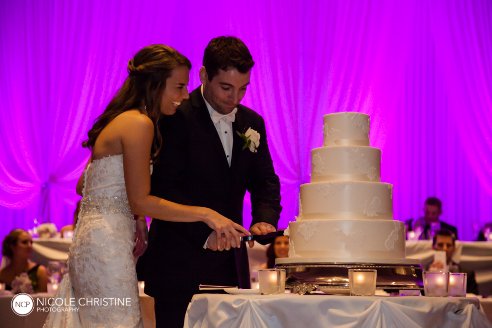 Best Schaumburg Wedding Photographer_-91
