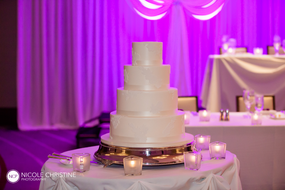 Best Schaumburg Wedding Photographer_-95