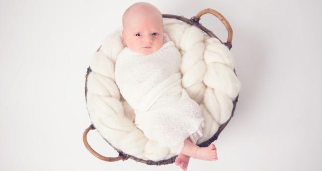 Sterling…Newborn!