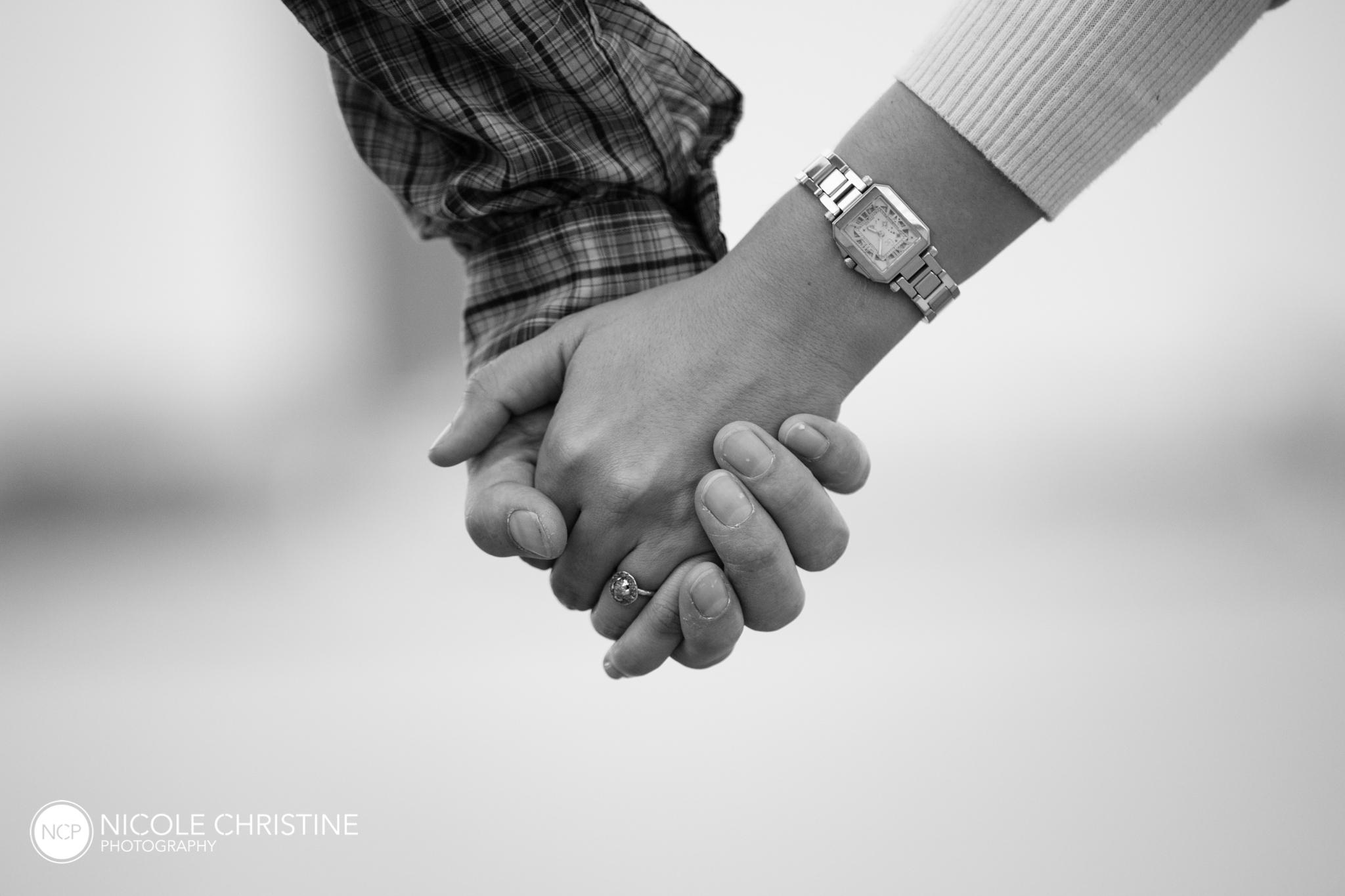 GinaJustin Best Chicago Engagement Photographer-12