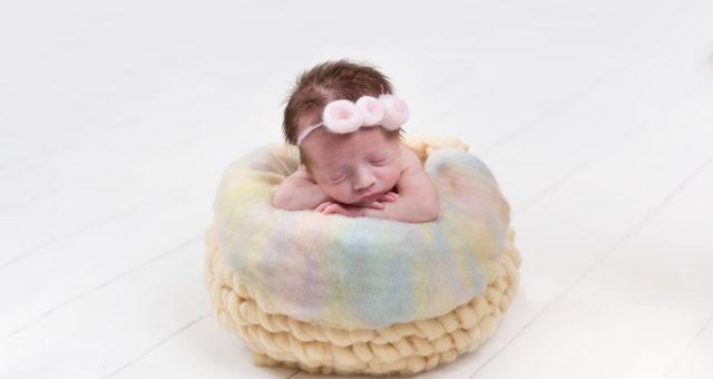 Maisie...Newborn!