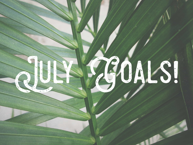 Chicago Photographer July Monthly Goals!